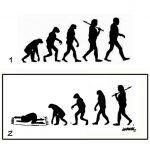 Evolution / involution